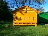 Posedy a včelíny